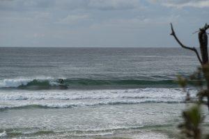 surfing illaroo sandon beach