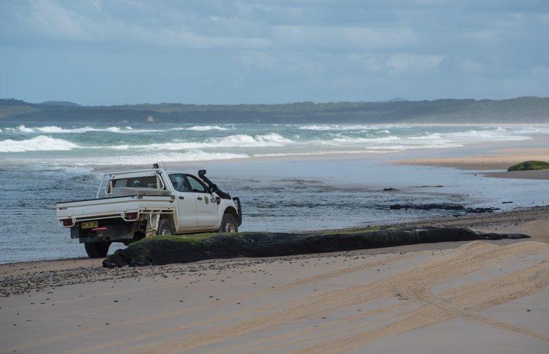 illaroo sandon beach driving